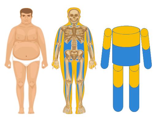 relation entre l'eau corporelle et l'impédance chez un homme gros